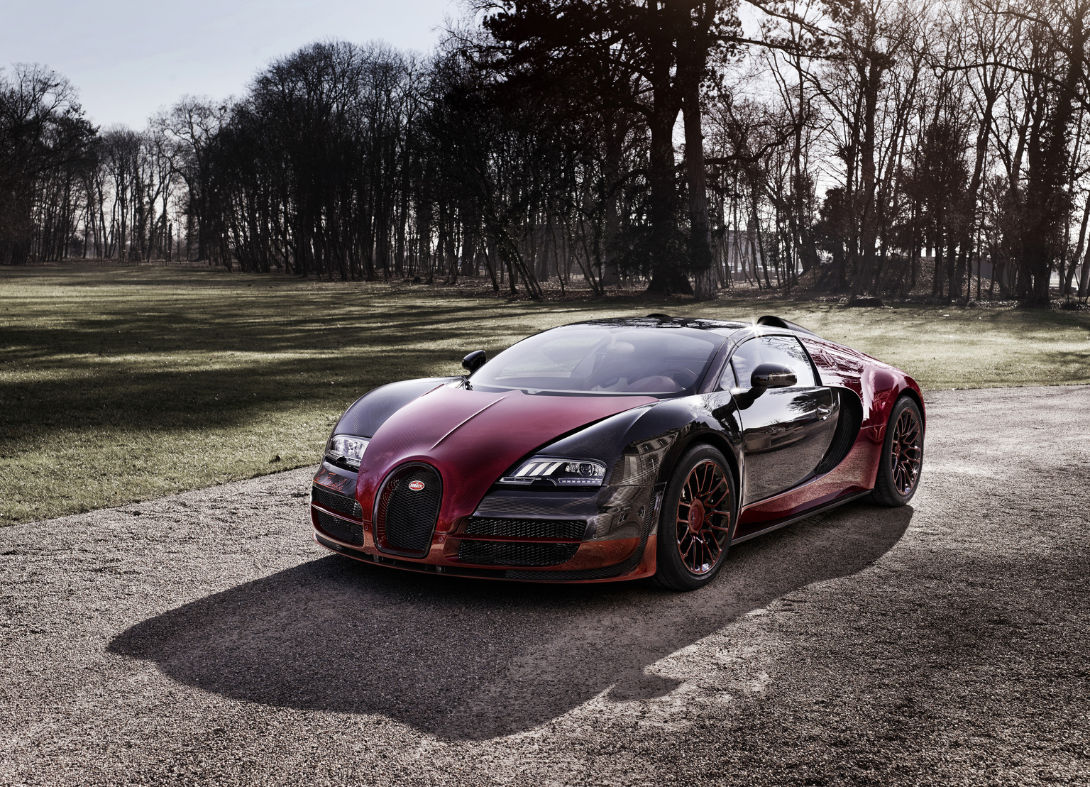 2015 Bugatti 16 4 Veyron Grand Sport Vitesse La Finale W16 Engine Diagram The Geneva International Motor Show Will Be Staged From 5 To 15 March At Palexpo Exhibition Centre In Exhibit Is Hall 1