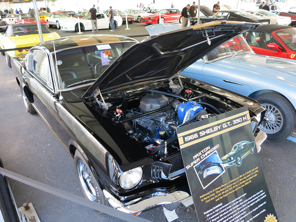 1081835-10241966 Shelby Mustang GT350H Gallery