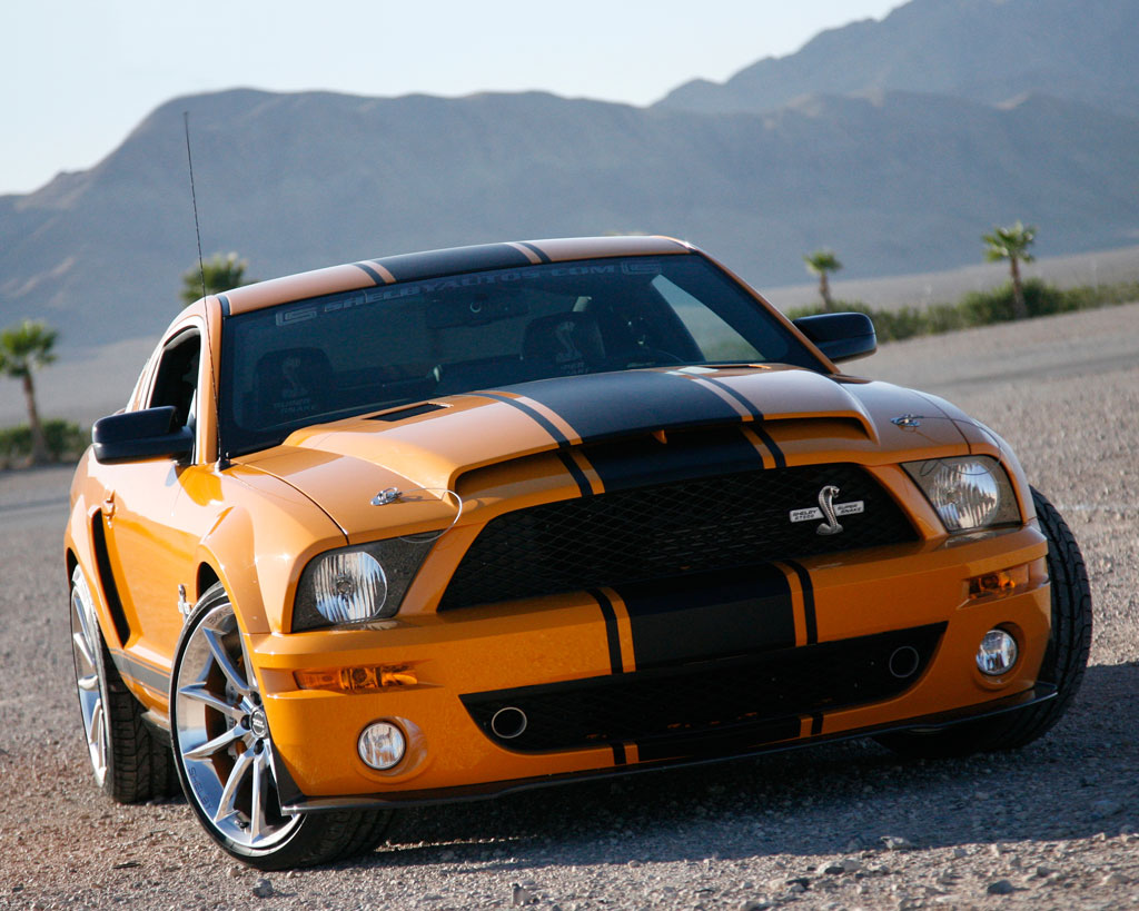 2008 2009 shelby mustang gt500 super snake shelby. Black Bedroom Furniture Sets. Home Design Ideas