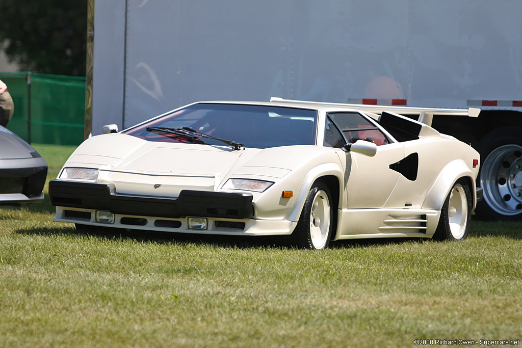 service manual 1987 lamborghini countach how to clear the. Black Bedroom Furniture Sets. Home Design Ideas