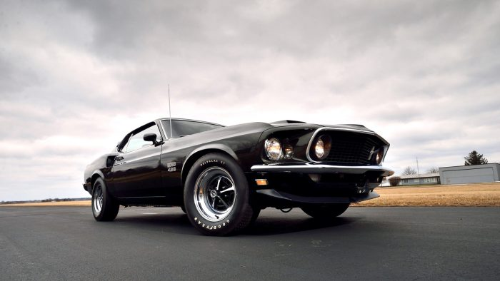 Classic Ford Mustangs